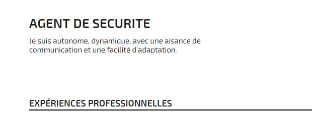 cv agent de securite cqp