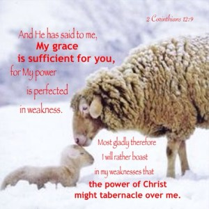 2 Corinthians 12:9 He said to me, My grace is sufficient for you, for My power is perfected in weakness.