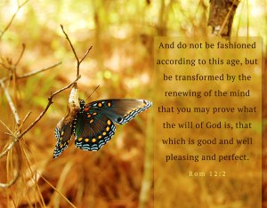 Rom. 12:2 And do not be fashioned according to this age, but be transformed by the renewing of the mind that you may prove what the will of God is, that which is good and well pleasing and perfect.