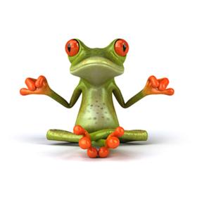 3d Frog Wallpaper Formation En Ligne En Gestion Du Stress Et Des 233 Motions