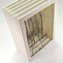 conception et fabrication d'un livre d'artiste