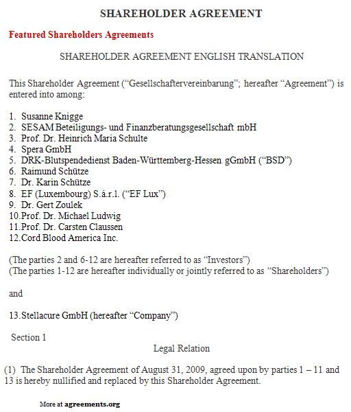 Shareholder Agreement, Sample Shareholder Agreement Template - shareholder agreement
