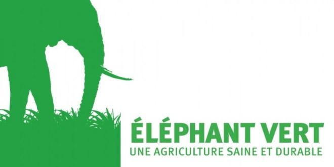 L'agenda complet d'Eléphant Vert Maroc
