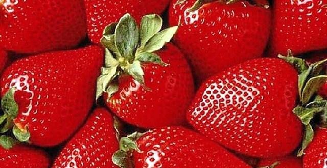 La fraise est à la mode