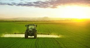 Le secteur agricole: le mastodonte de l'économie marocaine