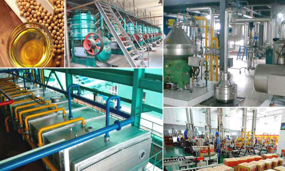 soybean oil processing plant project report,Detailed Project Reports
