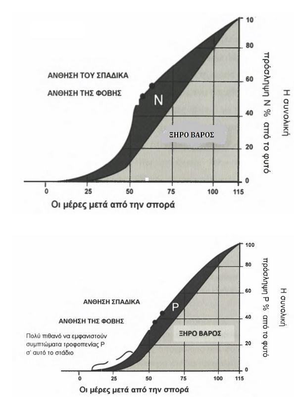 diagramata-kalampoki