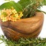 5 PLANTAS MEDICINALES IMPRESCINDIBLES EN EL HUERTO