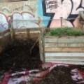 Cómo hacer Compost | Trucos y consejos