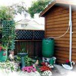 Cómo Recuperar el Agua de lluvia en el huerto