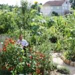 La Ekohuerta: un proyecto de superación y terapia saludable