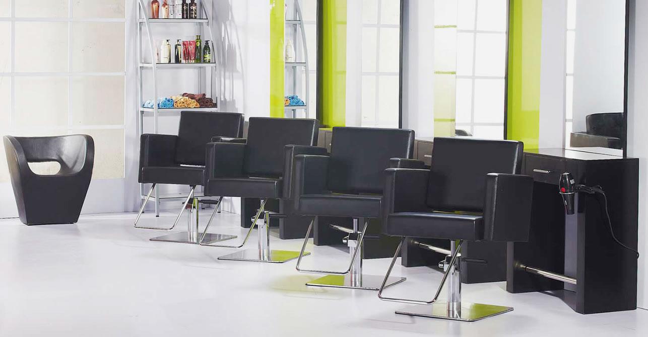 Ags Beauty Wholesale Salon Equipment Furniture Salon