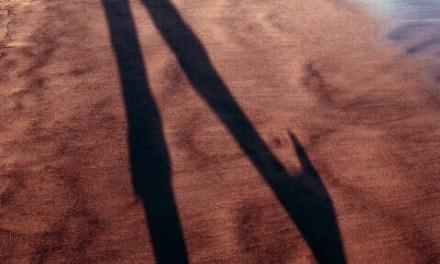 Mi sombra salta y salta