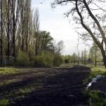 37-Halle Gimritzer Damm Blick Auf Baustelle Im Saugrabengebiet Nach Westen