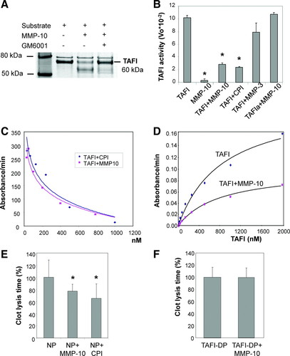 Matrix Metalloproteinase-10 Effectively Reduces Infarct Size in