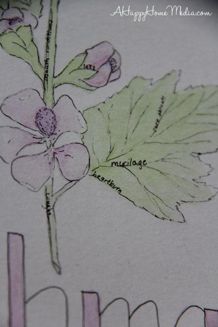 art herbs