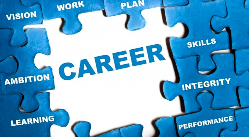 What Careers are There in Business? AHA World Campus