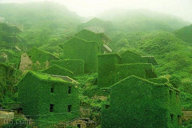 شجيرات تغزو قرية في الصين فتصنع منها لوحة فائقة الجمال