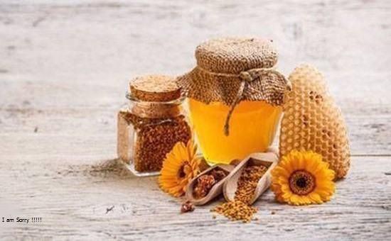 حقائق عن النحل ومنتجاته الكثير منا لا يعلمها في المقال الثاني
