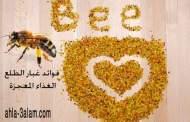 فوائد غبار الطلع الغذاء المعجزة واستخدامه في العلاج