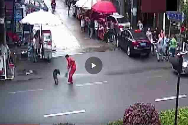 فيديو كلب مسعور, داء الكلب, شاهد فيديو كلاب مسعورة,كلاب مسعورة,كلب مسعور,فيديو احلى عالم