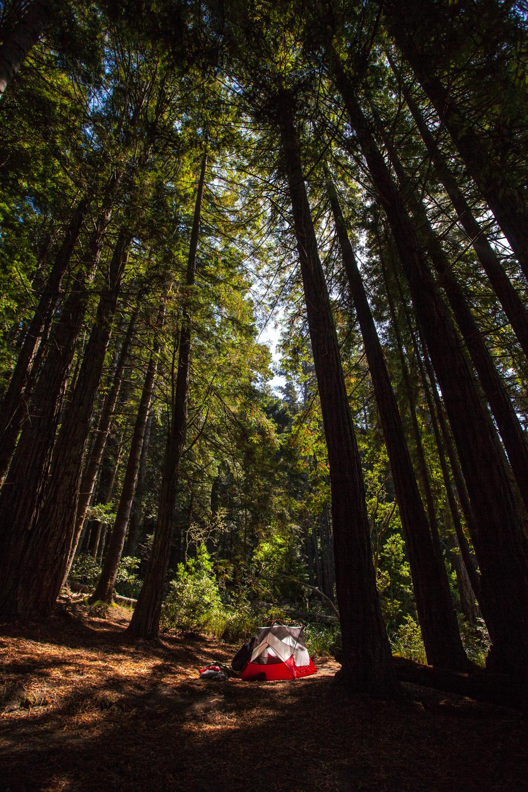 Campsite in Mendocino California