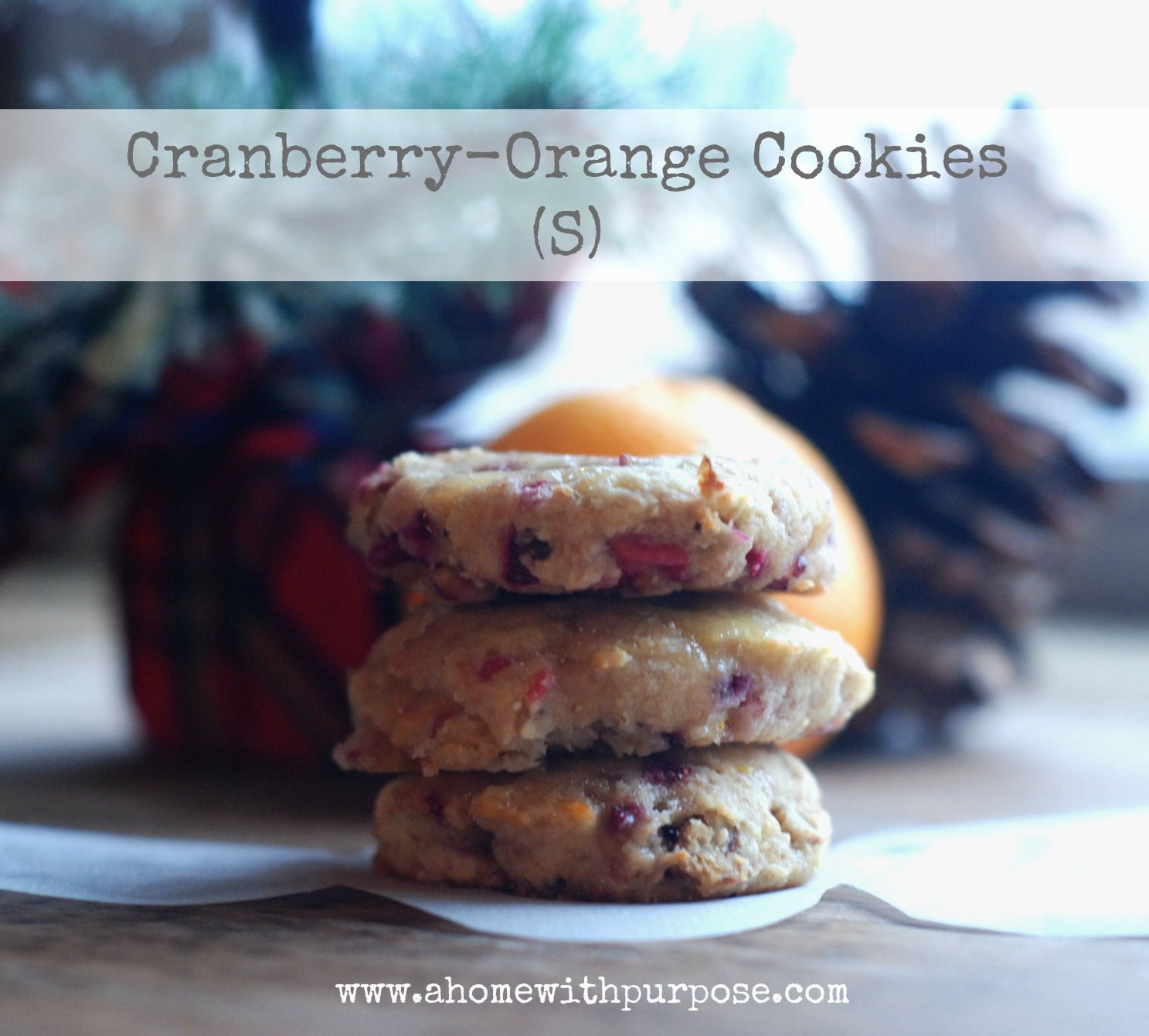 Cranberry-Orange Cookies (gluten, dairy and sugar free) | A Home with ...