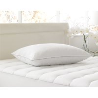 Hollander Memorelle Firm Pillow Queen 20x30 40 Oz. Fill 10 ...