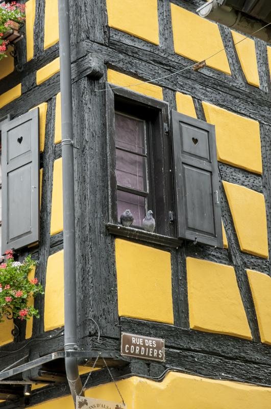 Alsace10