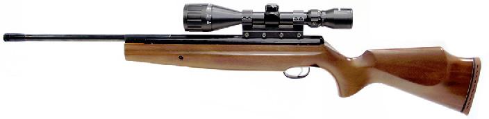American Airguns - Airgun, Caliber, and Pellet Selection