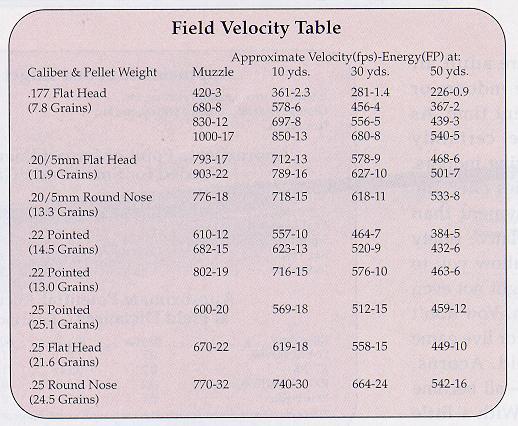 American Airguns - Field Use of an Airgun