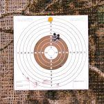 Hatsan Mod 125 Sniper .25 cal - 20 Yard Shot Card