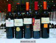 Bodega Señorio de las Viñas Guía de Vinos Xtreme 2015 © akataVino (8)