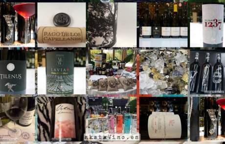 Portada Mejores Vinos III Encuentro Profesional Vadevinos 2016 © akataVino.es