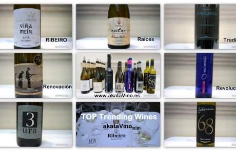 Ribeiro TOP Trending Wines akataVino Experiencia Verema Málaga 2016