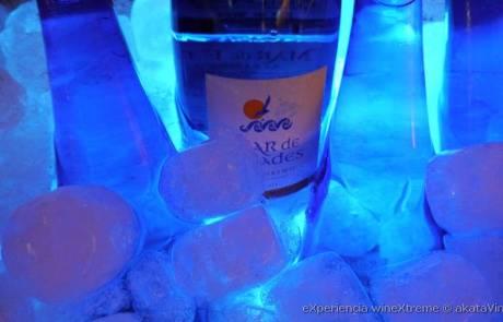 eXperiencia wineXtreme Rest. Bienmesabe y akatavino.es web 35