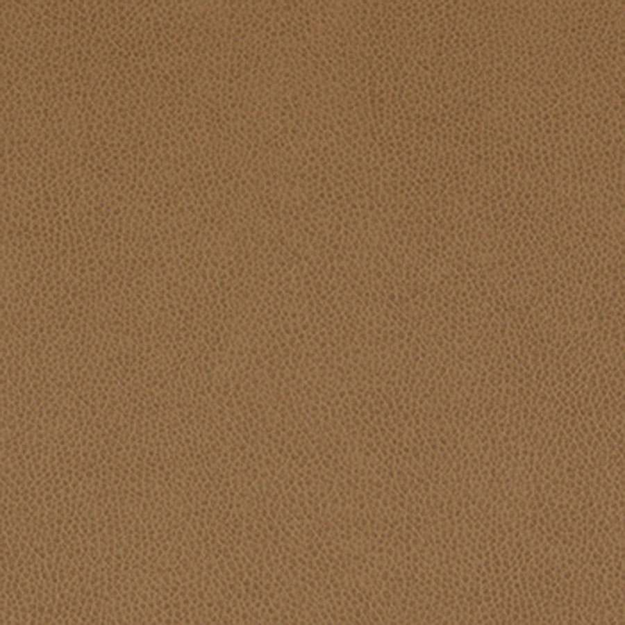 Fullsize Of What Color Is Sable