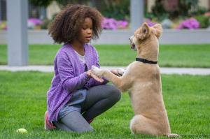 "Quvenzhané Wallis is the best reason to see the new ""Annie."" Photo courtesy of annie-movie.com"