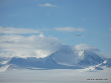 Vinson Trip Report, Videos and Pictures
