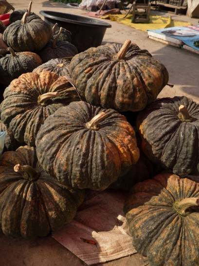 Huge pumpkins, not exactly halloween material though, are they?