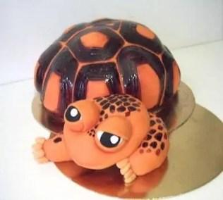 tort żółw