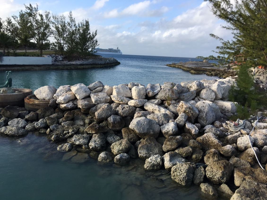 cocokay-shore