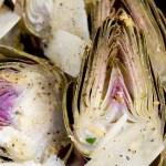 artichoke pecornio