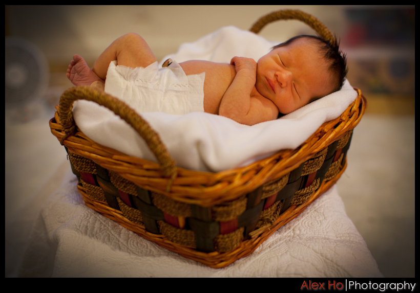 basket Lets all welcome baby Tyson