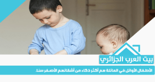 الأطفال الأوائل في العائلة هم أكثر ذكاء من أشقائهم الأصغر سنا.