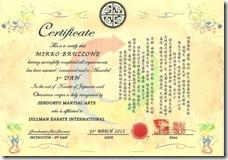 3rd DAN Zendoryu Martial Arts