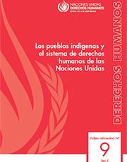 lospueglosindigenas-nacionesunidas-peque