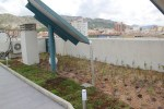 cubierta vegetal villena sedum tepe csped cntir crasas aromticas