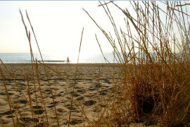 Playa_URBANOVA