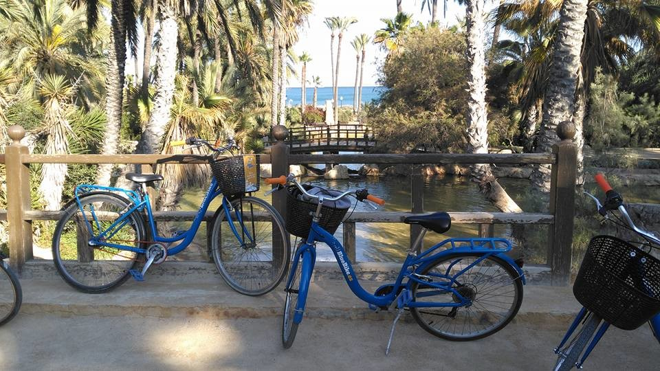 blue bike rental tours Alicante